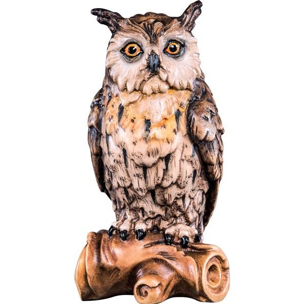 Owl on bough